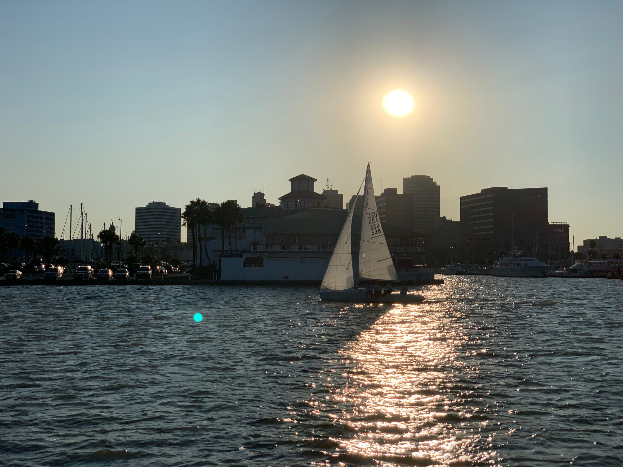A sail boat passes by in Corpus Christi's downtown marina on Wednesday, July 24, 2019.