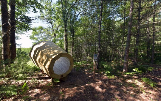 The Little Traverse Conservancy in Harbor Springs has placed a huge megaphone in a forest preserve north of Afton.