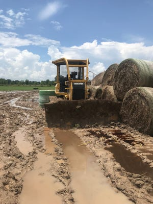 A bulldozer stolen from a job site in Eunice was recovered in Ville Platte.