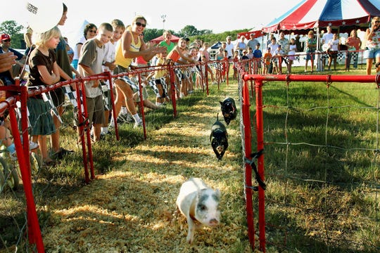 Crowds cheer for their favorite pig in the pig races during the Williamson County Fair on Aug. 8, 2006.