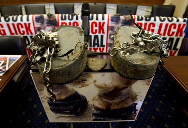 Horse shoes are shown during a news conference, ahead of a House vote on a bill that would prevent Soring in training Tennessee Walking horses on Capitol Hill in Washington, Wednesday, July 24, 2019. (AP Photo/Jose Luis Magana)