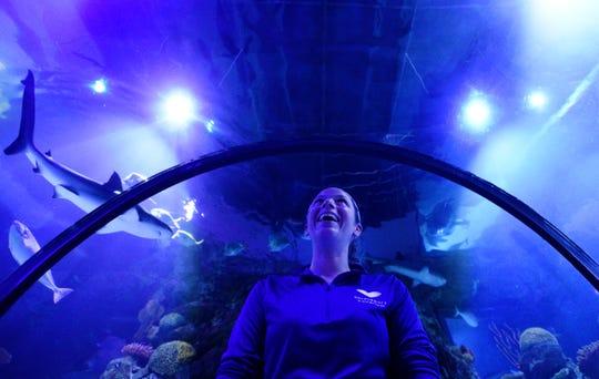 Kayla Leyden is the senior aquarist at Shreveport Aquarium.
