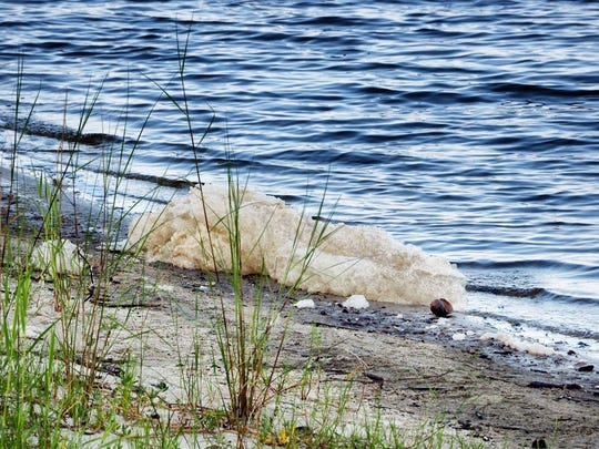 Foam laps up recently along the banks Lake Poinsett, an outcropping of the St. Johns River. Some fear sewage sludge spread along the river's watershed is threatening water supplies.