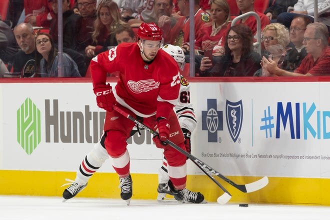 The 23-year-old Dominic Turgeon had six goals and 14 assists in 72 games last season for Grand Rapids of the AHL. He also played in four games with the Red Wings.