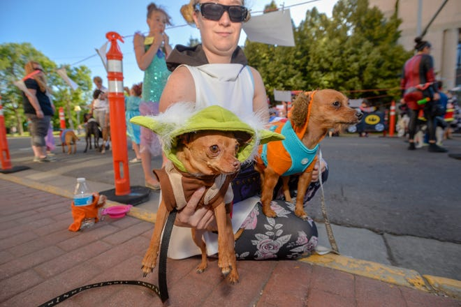Pet and Doll Parade on Central Avenue, Thursday, July 25, 2019.