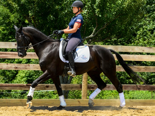 Callie Jones and Phil, her 11-year-old Hanoverian horse, practice with Trainer Angela Jackson, not pictured, at Jackson's training facility in Henderson, Ky., Thursday afternoon, July 25, 2019. Jones and Phil work on dressage training about five days a week to stay limber for upcoming competitions.