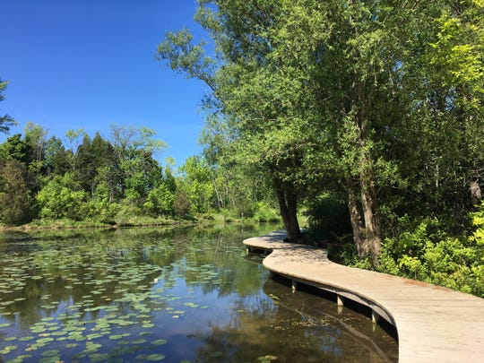 Schlitz Audubon Nature Center built wheelchair-accessible boardwalks throughout the nature center. An upcoming restoration project will further expand wheelchair-accessible boardwalks into newly created wetland areas.