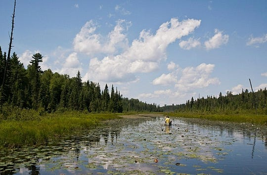 Canoeists paddle on the Pocket River in the Boundary Waters Canoe Area.