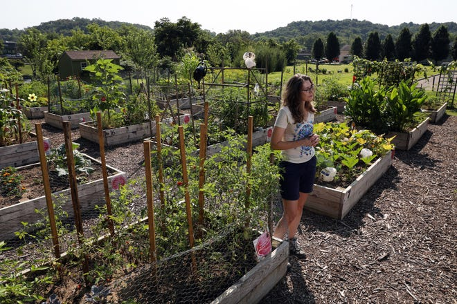 Lori Wince of Weasel Boy Brewing talks about Restoration Park amidst the park's garden boxes recently.