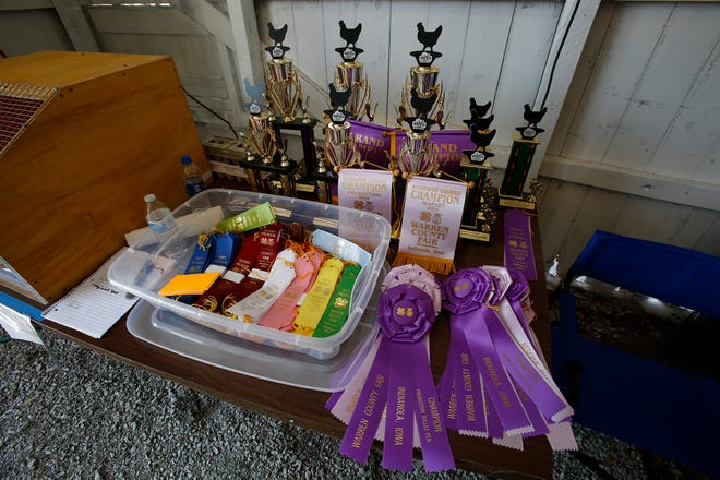 Ribbons and trophies are ready to be handed out after the poultry judging at the Warren County Fair on July 26, 2019.