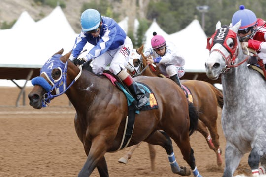 Midevil Hero, ridden by Casey Chavez, wins the 1,000 yard mixed stake race at Ruidoso Downs Zia Fest. Midevil Hero finished with a time of 54.13.