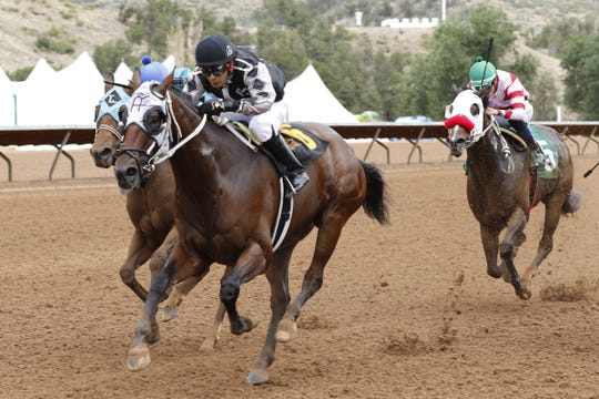 Paddy's Charm rides in the second race of the Ruidoso Down Zia Fest. Paddy's Charm lost in a photo finish.