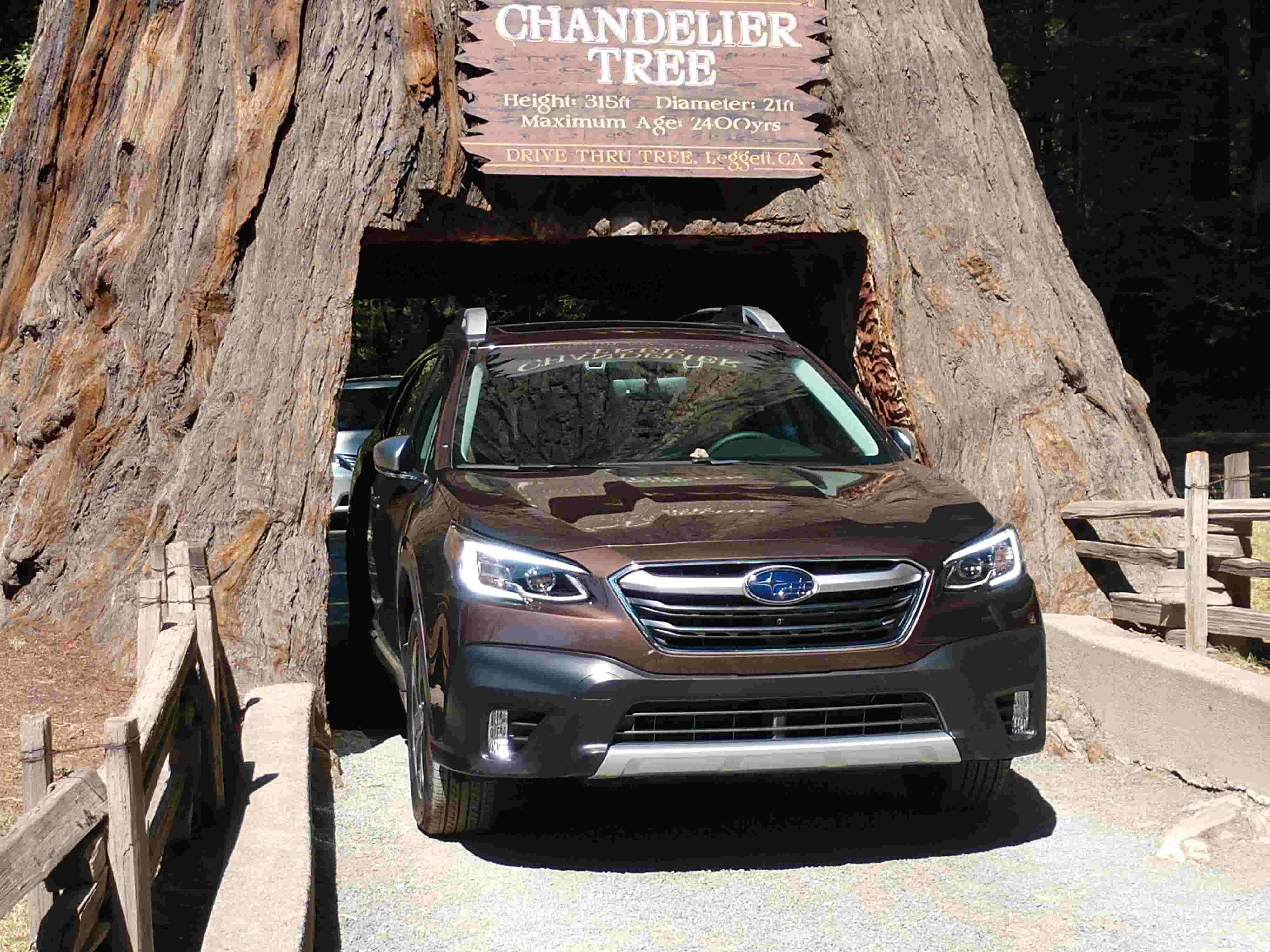 2020 Subaru Outback wins with value, safety, features