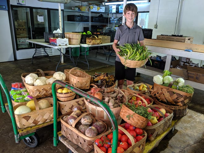 Dante Saldino sorts fresh produce at Bounty & Soul in Black Mountain, where the 13-year-old spent a week volunteering during his summer break.