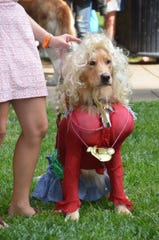 """The East Tennessee History Fair's annual History Hound costume has brought out celebrities like """"Dolly Dog"""" in the past."""