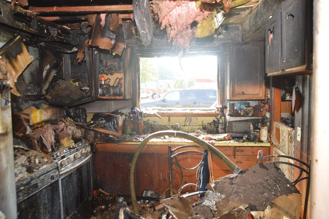 Officials said a dog started a house fire Saturday morning in Hamburg Township.