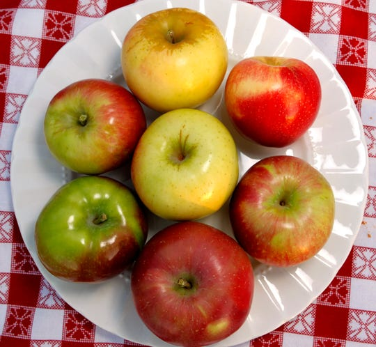 Apple Holler in Sturtevant grows a variety of apples, and the crop has fared well this year.