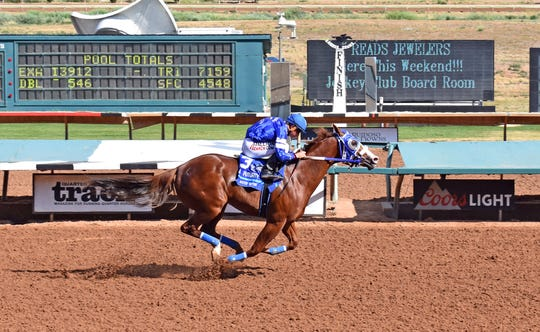 Mister Riptide at Ruidoso Downs Race Track.