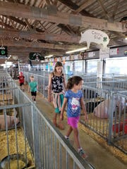 Grandchildren Wyatt (from left) Harrison, Serenity, and Aryana tour the hog barn at the Outagamie County Fair.