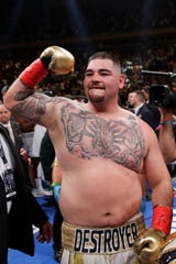 Andy Ruiz, weighing in at 261 pounds, celebrates beating Anthony Joshua in a heavyweight title match.
