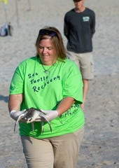 A Kemp Ridley sea turtle that was rescued and rehabbed by Essex County Turtle Back Zoo, Sea Turtle Recovery is released back into the ocean in Point Pleasant Beach.  Kemp's ridley sea turtle, which is also called the Atlantic ridley sea turtle, is the rarest species of sea turtle and is critically endangered.