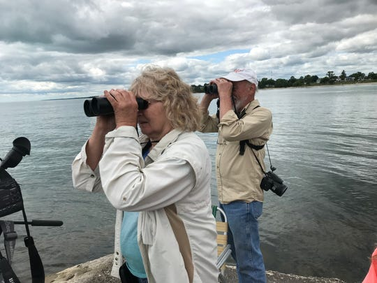 Maureen and Dale Gross of Kewaunee use binoculars to zoom in with their view of the tall ships in Lake Michigan as the ships mustered off the Algoma shore.