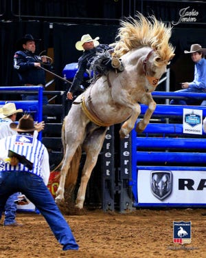 Jesse Kruse of Great Falls was the PRCA's saddle bronc world champion in 2009 and is making another strong bid to earn a National Finals Rodeo berth.