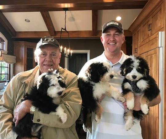 Former Purdue coach Gene Keady and current Purdue coach Matt Painter got new Bernedoodles together.