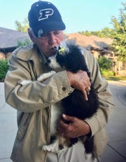 Former Purdue coach Gene Keady is smitten with Abbey Road, his new Bernedoodle.