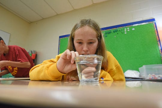 Lauren Manning, 15, uses paper clips and a full cup of water to study surface tension Tuesday morning during LEXplore Science Camp at Lexington Eastern Elementary School.