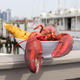 Surf City in Jersey City to host Lobster Palooza, here's what to expect