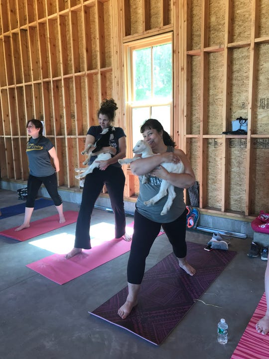 Participants take part in a goat yoga class at Hudson Valley Kinders Farm in Red Hook.