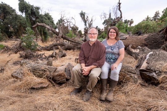 Steve and Mary Lee at Quaker Oaks Farm on Thursday, July 25, 2019.  The farm is now a non-profit and recently organic certified in line with the goals of founders Jim and Beth Lovett in pursuit of sustainable agriculture. The fallen oak in the background was once the largest tree on the property.