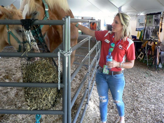 Cristine Bender, publicity co-chair and dairy farmer meets a Percheron horse.