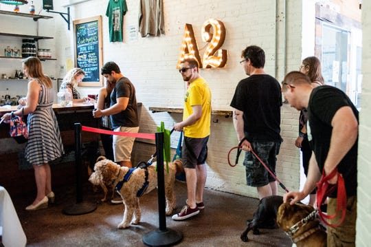 American Cancer Society Bark for Life of Ann Arbor will host a second Drinking with Dogs event like this one held at Ann Arbor Distilling Company on June 23, 2019, in Ann Arbor.