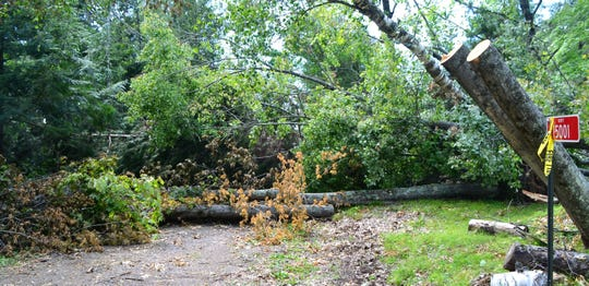 This driveway on Shadow Lake Lane in the town of Doty remained blocked by fallen trees on July 29.