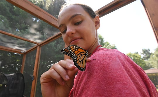 Macy Wade, 12, of Mansfield, gets a close look at a butterfly Wednesday at Gorman Nature Center.