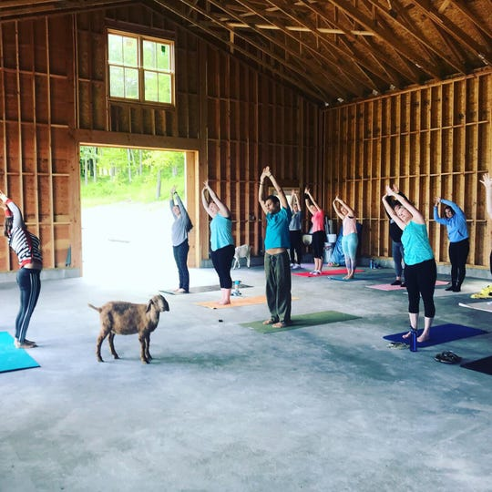 Tiffany Simoncini, left, leads a goat yoga class at Hudson Valley Kinders Farm in Red Hook.