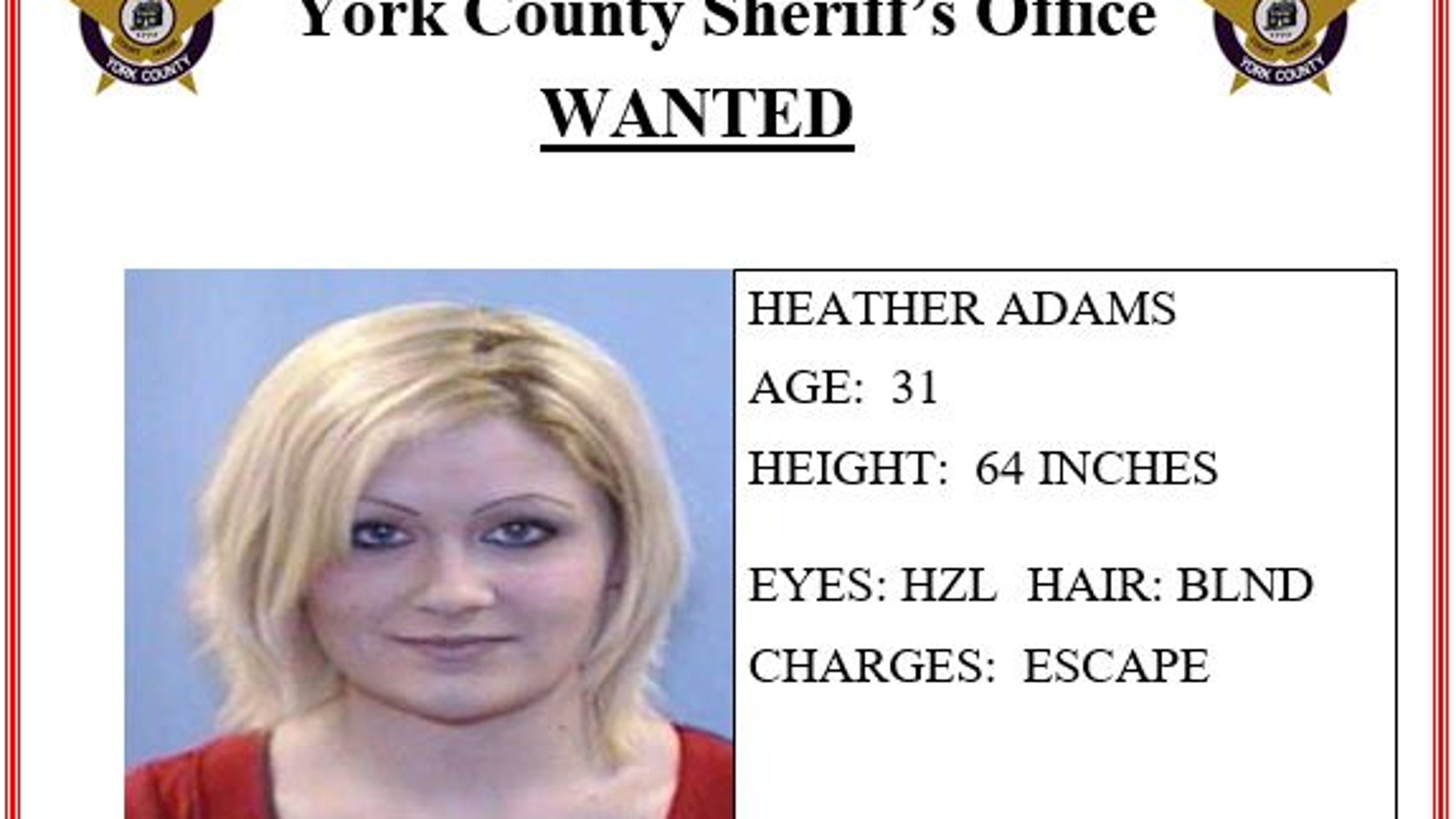 York County Most Wanted: Updated pictures, how to report people