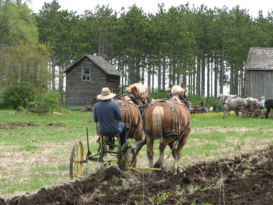 Members of the Jefferson County Draft Horse Association perform field work at Old World Wisconsin.