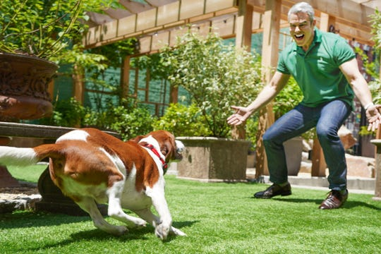 Andy Cohen frolicks with his dog, Wacha.