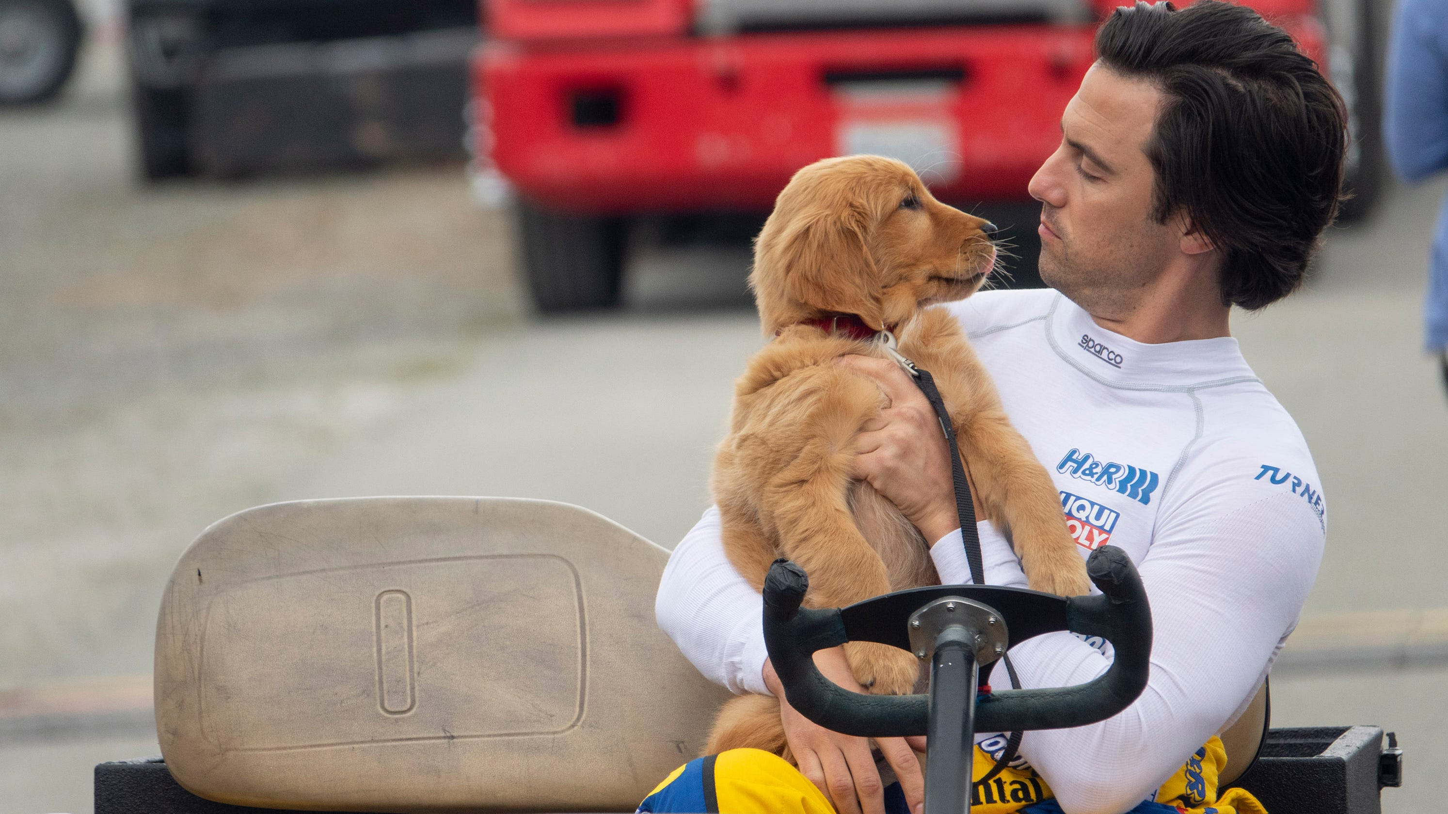 The Art of Racing in the Rain': This dog movie will have you