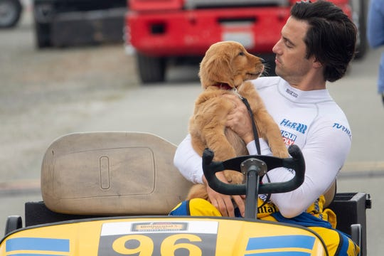 Enzo (voiced by Kevin Costner) is a wise golden retriever who narrates his life with Denny (Kevin Costner).