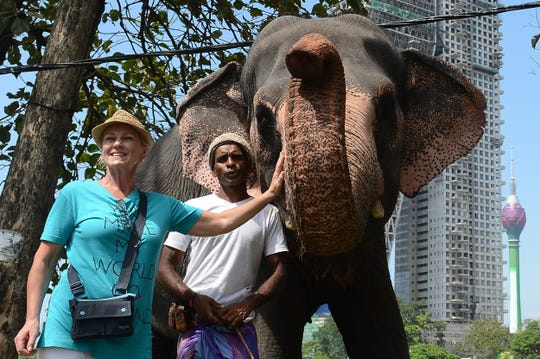 A foreign tourist poses for photographs with a Sri Lankan mahout and his elephant in March 2018. In an effort to revive the Asian island country's tourism industry, it will offer free, one-month visas to visitors from 50 countries on arrival.