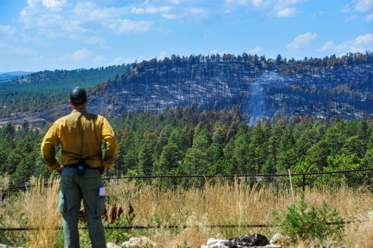 Jeremiah Miller, a division supervisor on the North Hills Fire north of Helena, surveys the southern edge of the fire line on Wednesday afternoon, July 31, 2019.