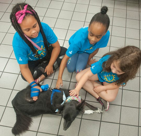 Journey Hart, 8, Adriana Long, 8, and Chloe Johnson, 8, pet Sadie, a rescue dog from the Oldham County Humane Society. Aug. 1, 2019