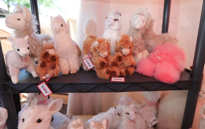 The Germantown Police Department is collecting 8- to 12-inch stuffed animals until Aug. 7. Each donation will be good for a free ticket to join a group for a 125-milemotorcycle ride throughout Washington County on Aug. 14.