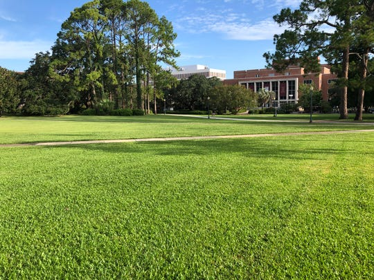 All is quite and on  Landis Green on FSU campus, site of 1974 streaking craze.