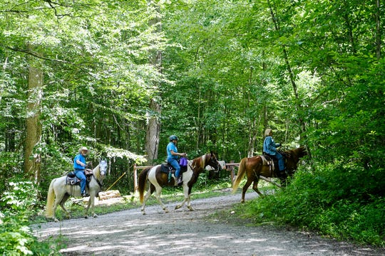 Horseback riders venture into the woods near the Harmon Den Horse Camp along Fall Branch Road July 24, 2019.