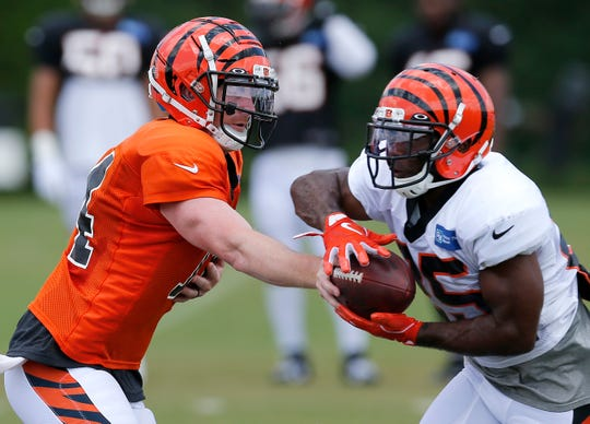 Cincinnati Bengals quarterback Andy Dalton (14) hands off to running back Giovani Bernard (25) during a training camp practice at the Paul Brown Stadium practice field in downtown Cincinnati on Friday, Aug. 2, 2019.